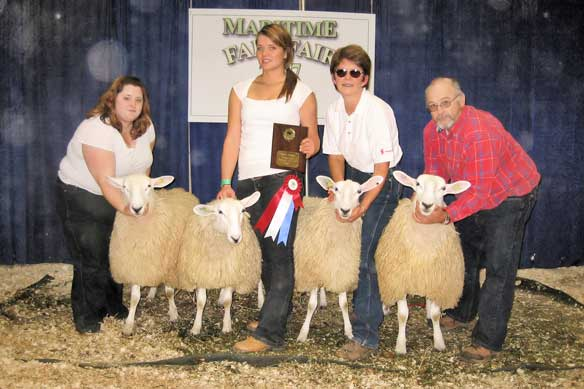 Show Ring 2007-2008