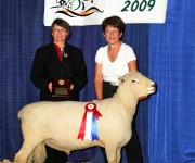 Show Ring 2009-2010