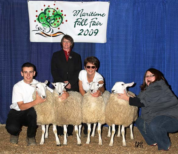 Brook Ridge Farm: Show Ring 2009-2010