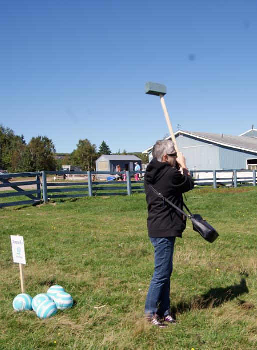 Open Farm Day 2012