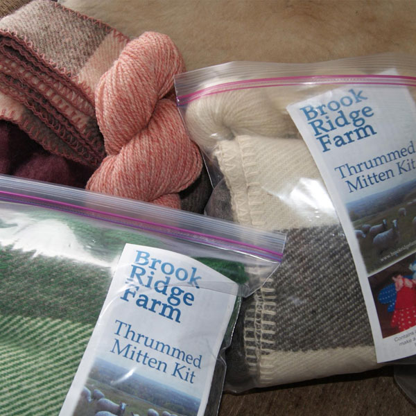 Brook Ridge Farm: Mitten Kit